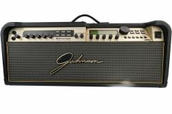 Johnson Millenium 250 Amp